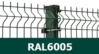 3D žogs RAL6005